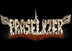 Profilový obrázek Praselizer