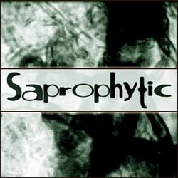 Profilový obrázek Saprophytic