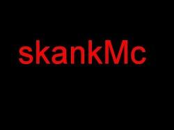Profilový obrázek skankMC