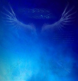 Profilový obrázek SPIRIT