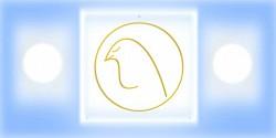 Profilový obrázek ithar