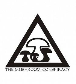 Profilový obrázek The Mushroom Conspiracy