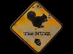 Profilový obrázek The Nutz