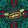 Profilový obrázek Kašmírové vážky