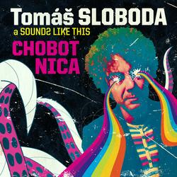Profilový obrázek Tomas sloboda a Sounds Like This
