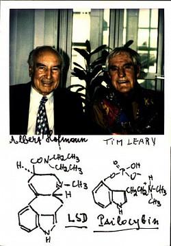 Profilový obrázek Triglav(ex THC Avolate)