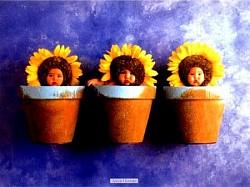 Profilový obrázek VKH Trio