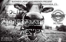 Profilový obrázek Budweis Ladies