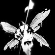 Profilový obrázek hybridtheory24