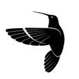 Profilový obrázek mockingbird