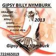 Profilový obrázek Gipsy Billy Nymburk