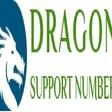 Profilový obrázek dragonsupport