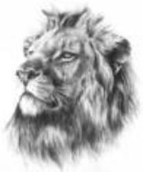Profilový obrázek Oldrich Hricina