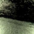 Profilový obrázek viwalda