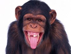Profilový obrázek Jrznck