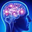 Profilový obrázek Epileptik