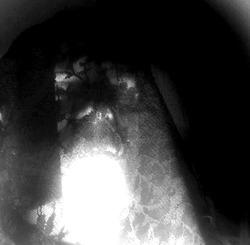 Profilový obrázek Pethrezen Temný