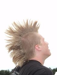 Profilový obrázek Chyler