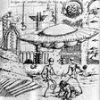 Profilový obrázek tarotovscience