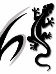 Profilový obrázek mlok79