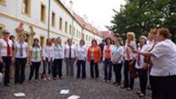 Profilový obrázek Sah Děčín-pěvecký sbor