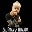 Profilový obrázek Zajimavy Hovado 2