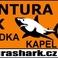 Profilový obrázek Agentura SHARK