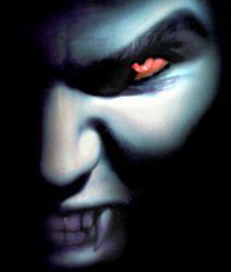 Profilový obrázek moamilan