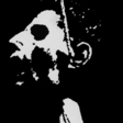 Profilový obrázek pva5
