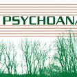 Profilový obrázek psychoanalyza
