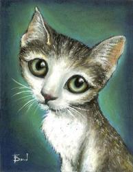Profilový obrázek hafyna
