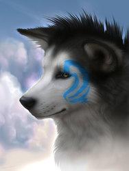 Profilový obrázek anyldras