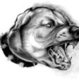 Profilový obrázek skica07