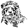 Profilový obrázek Maroš