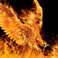 Profilový obrázek PhoenixBird