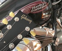 Profilový obrázek Fendergibson