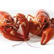 Profilový obrázek Crayfishh