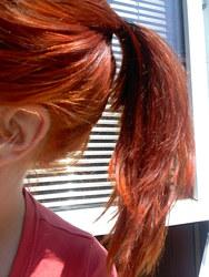 Profilový obrázek Alice In...