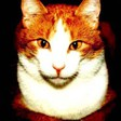 Profilový obrázek Alička