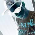 Profilový obrázek ANC_KIWIS
