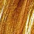 Profilový obrázek athena
