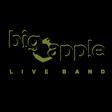 Profilový obrázek BIG APPLE live band