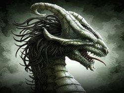 Profilový obrázek Andula Drak