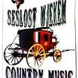 Profilový obrázek SEŠLOST&WJEKEM-country band