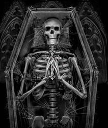 Profilový obrázek hrobb