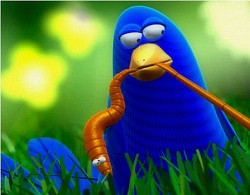 Profilový obrázek Bird