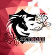 Profilový obrázek Skyroseir