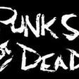 Profilový obrázek crazy punker