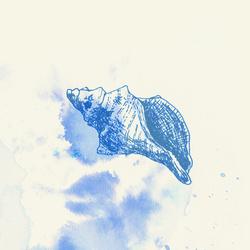 Profilový obrázek Prune
