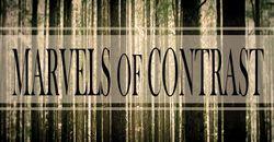 Profilový obrázek Marvels of Contrast
